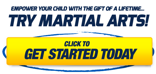 Try Martial Arts!